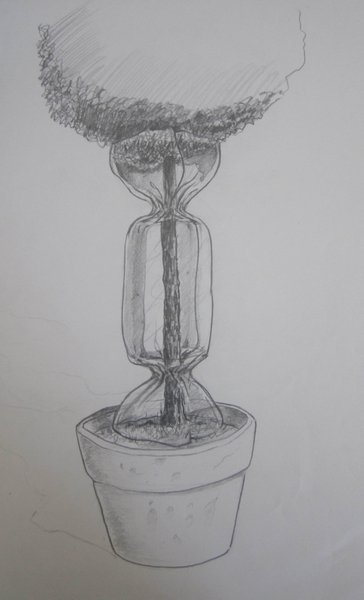 Drawing Tree Candy - Laurence Jenkell